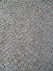Cobbled footpath