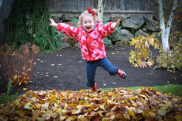 leaf jumping-2