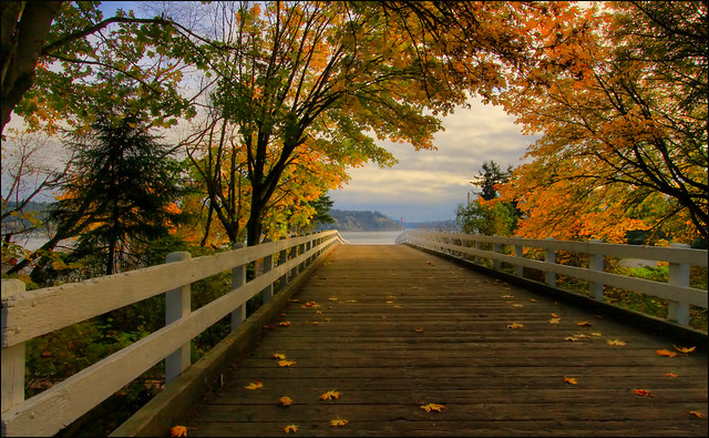 Bridge to the sound with fall color, Tacoma, Washington
