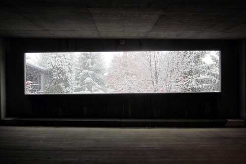 autumn trees snow ny newyork storm window out october looking parkinggarage cement patterson inside snowfall 2011