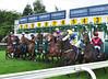 TCi Race Day 2011