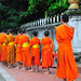 Small photo of Lao Luang Prabang Alms