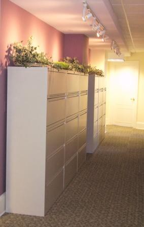Corridor File Cabinets, Fuchsia Accent Wall, Track Lighting, Patcraft Carpet Tiles, Accessories, Wasington DC National Historic Building