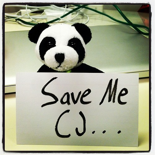 Save the Panda CJ by thismeik