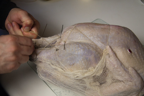 Tying the Turkey Up