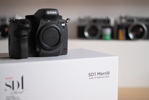 SIGMA SD1 Merrill 04