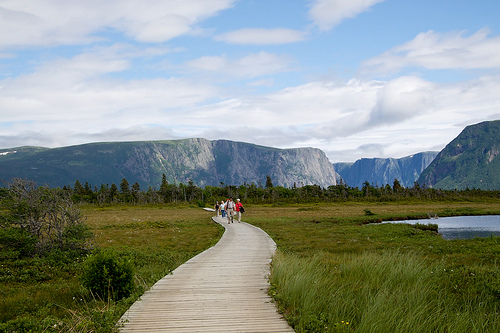 Isola di terranova rocciosa e selvaggia con panorami for Gros morne cabine del parco nazionale