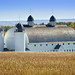 (D.H Day Barn)  - Sleeping Bear Dunes National Lakeshore