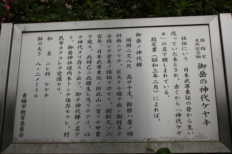 大岳山_15
