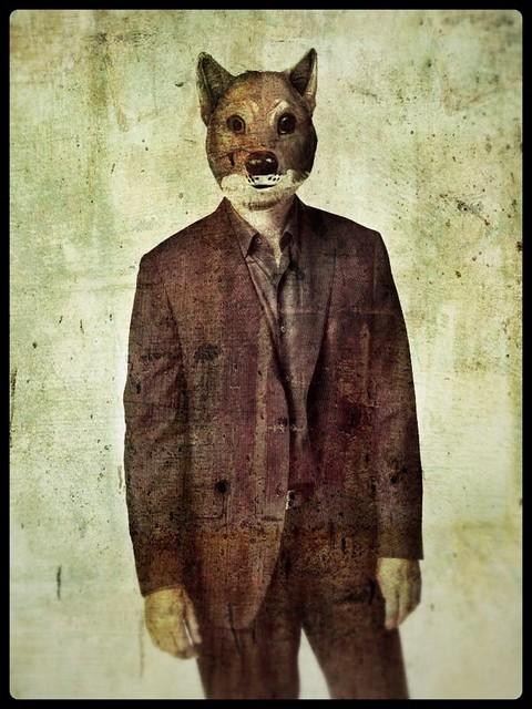 Brown fox