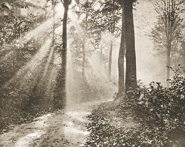 Matinée d'automne, 1894, by Edouard Hannon