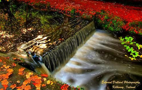 autumn kilkenny ireland painterly fall nature automne landscape waterfall aqua herbst eire impressionism photoart libre irlanda ierland autunna cillchainnigh edwarddullardphotography otonr ringexcellence