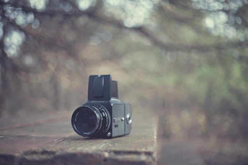 film photography.