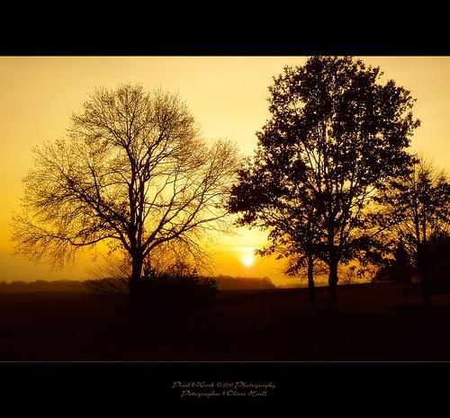 autumn sun sunshine photoshop canon eos yahoo google flickr raw image time © adobe 24mm 15th lightroom copyrighted schneiderkreuznach 2011 pixelwork 500px thelightpainterssociety oliverhoell allphotoscopyrighted