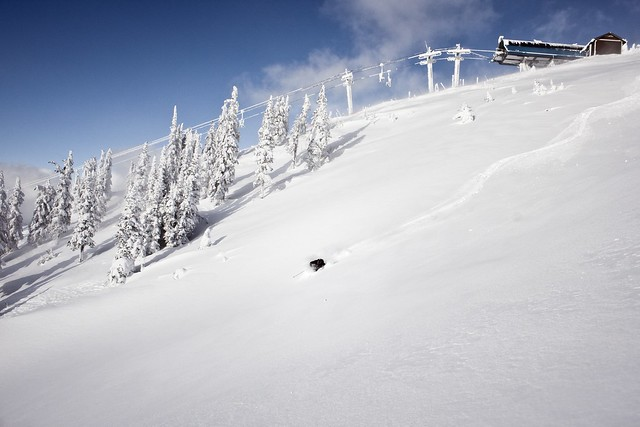eight british columbia ski resorts launch season