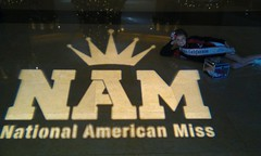 NAM Logo in the entry way to the Marriott for Nationals!