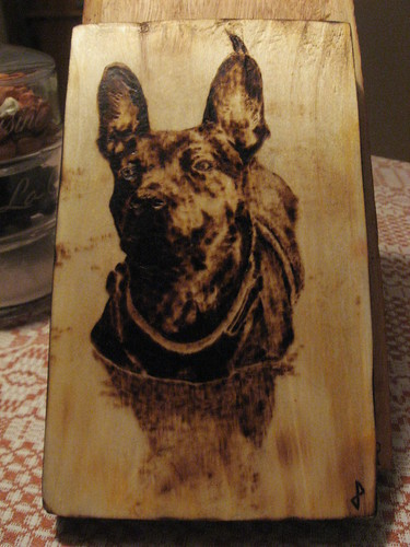third from a photo by s w i m