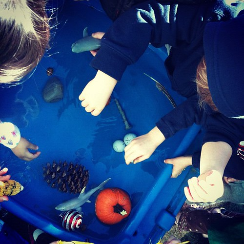 Science For Kids Floaters And Sinkers Babble Dabble Do