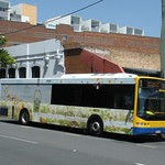 Brisbane Transport 1039