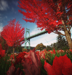 St. Johns Bridge, a fall morning