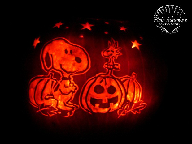Woodstock and snoopy pumpkin carving flickr photo sharing