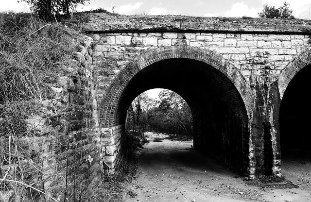 BNSF Railroad Three Arch Bridge over Bullinger Creek, Sealy, Texas 1112111436BW from Flickr via Wylio