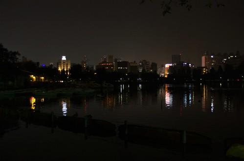 夜の不忍池