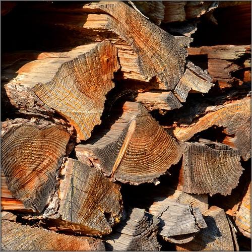 Timberwork by Ginas Pics