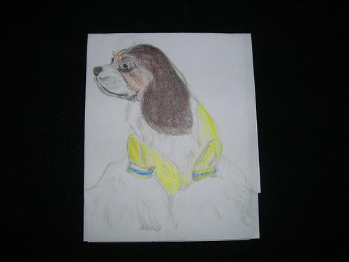 Roxi, The Cocker Spaniel