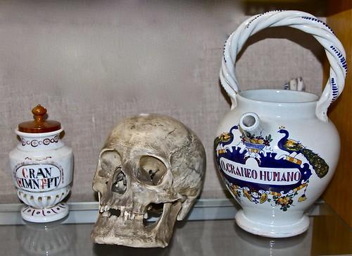 Cranium Humanum