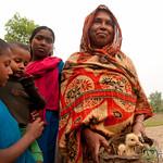 Mother, Chicks and Children - Hatiandha, Bangladesh