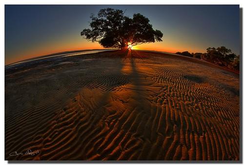 silhouette sunrise australia brisbane queensland ripples hdr nudgeebeach canon7d samyang8mm oloneophotoengine
