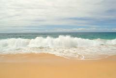 Casuarina Coastal Reserve