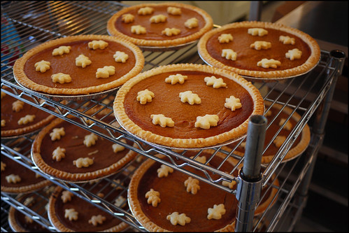 pumpkin pies - happy canadian thanksgiving