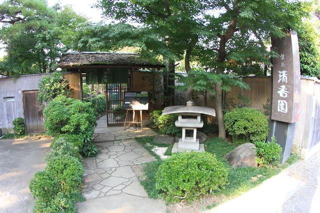 清香園 @ 盆栽町 seikouen - bonsai cho