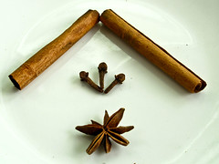 IMG_1846 玉桂皮cinnamon sticks ,丁香clove和八角anise star