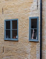 The neighbour has legs