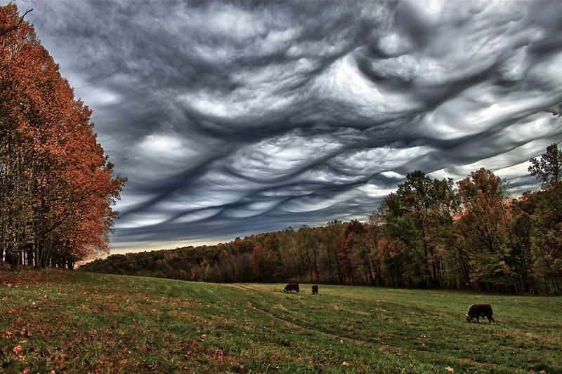 Волнисто-бугристые облака