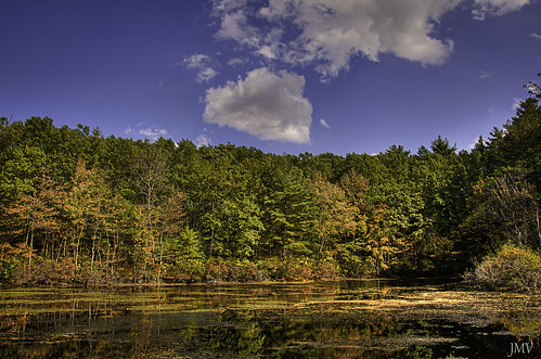 walden pond water concord massachusetts tractor fall autumn sky clouds hdr tonemapped nikon d90 abandoned field otoño herbst autunno green red nature trip travel foliage denoise topaz adjust photoshop cs4 high dynamic range colour sunny leaves ojas usa sunlight 秋 枝葉