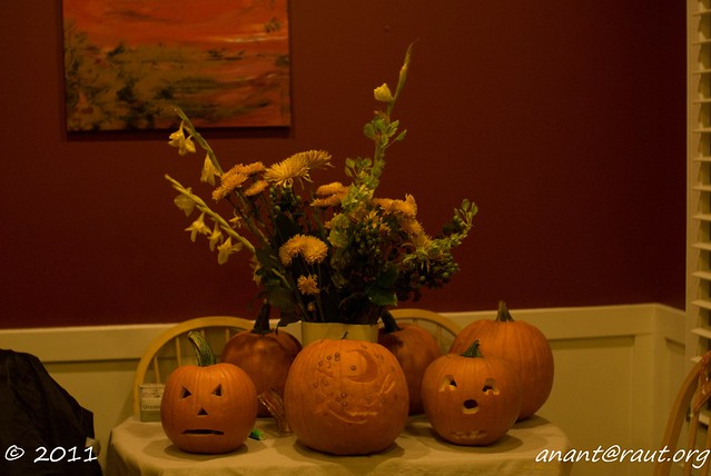 Halloween 306
