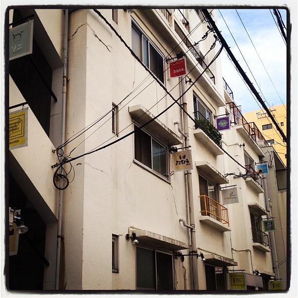 一度来てみたかった場所。昔の同潤会アパートみたいな趣きがある。