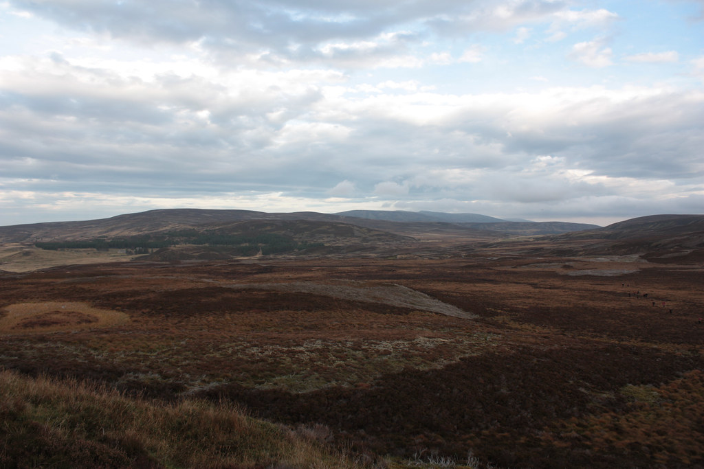 The Allt Mor bog and Cromdale Hills