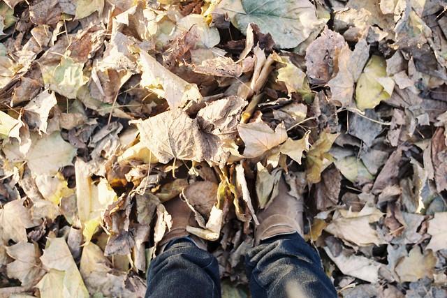 A mes pieds