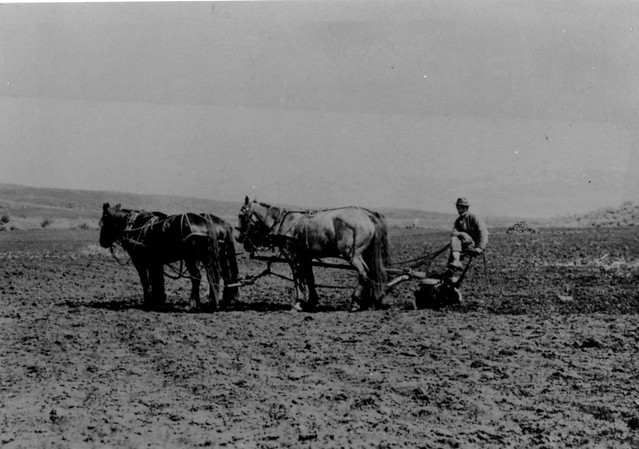 Agriculture Plowing