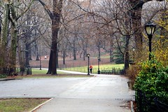 Joggers in Central Park