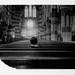 Polaroid 600se by snoopmiao