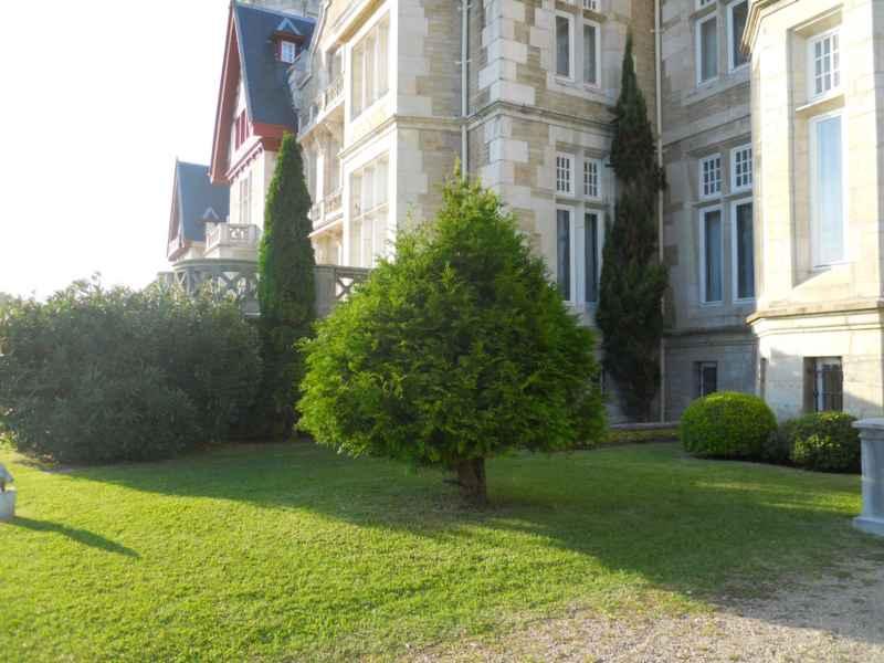 Cipreses en el Palacio de la Magdalena