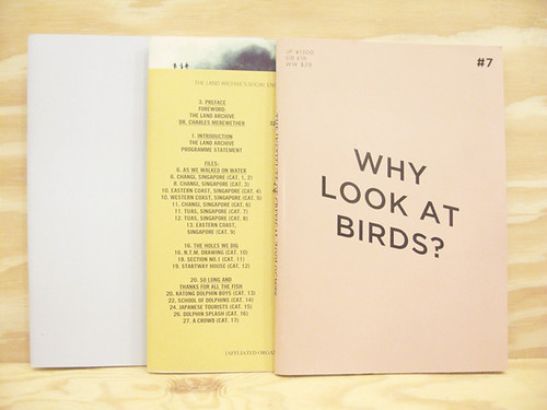 Zines by Robert Zhao