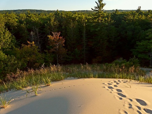 Dune Mound at Old Indian (Old Indian Trail 4/4)