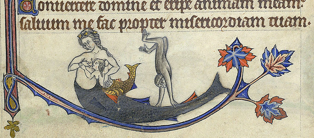 Breastfeeding Fish-siren